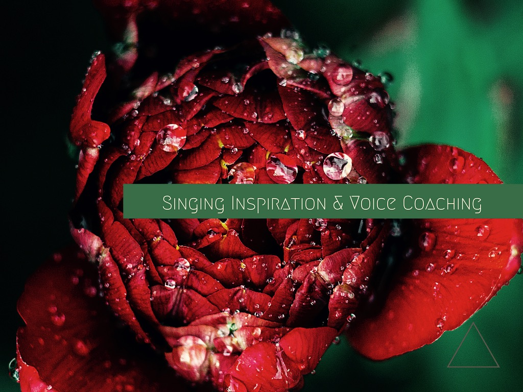 Singing inspiration and voice coaching